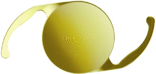 Multifocal Intraocular Lens